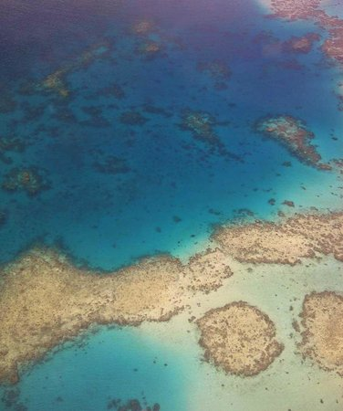  , : Reef spots to see while you fly in