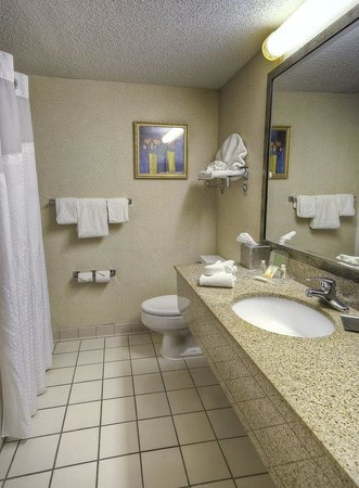 Holiday Inn Boxborough (I-495 Exit 28): Guest Bathroom