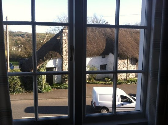 Yealmpton, UK: The view from my bedroom window