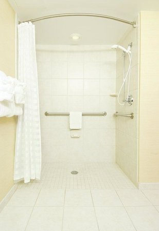 Embassy Suites Williamsburg: Accessible Suite Bathroom