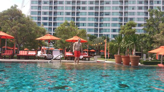 Amari Orchid Pattaya: View on the pool