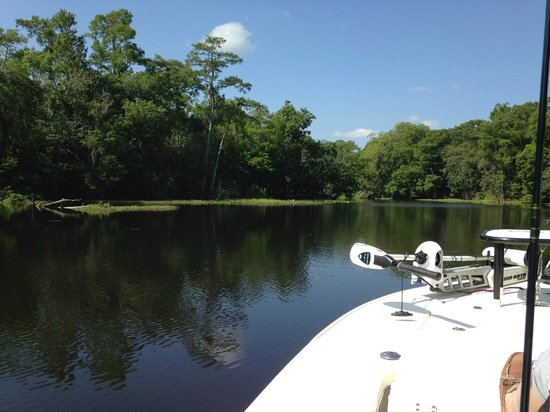 Hontoon Landing Resort & Marina: St. Johns River