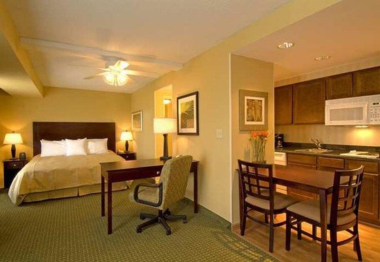 Homewood Suites Tampa Brandon: Guest Room