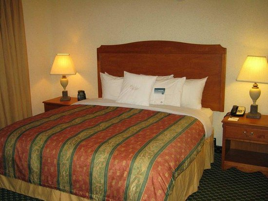 Homewood Suites by Hilton Corpus Christi: King Suite