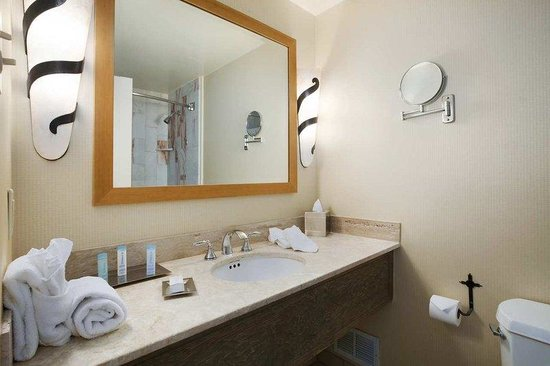 Hilton Santa Fe Historic Plaza: ADA Bathroom