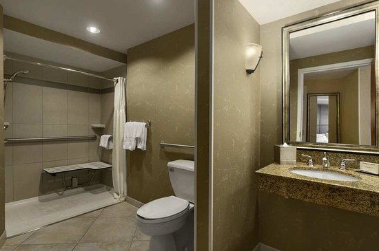 Hilton Chicago/Oak Lawn: Accessible Bathroom w/ Shower