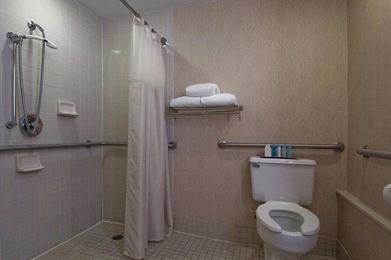 Hilton St Petersburg Bayfront: Accessible Bathroom