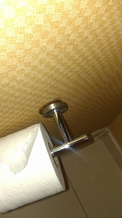 Doubletree by Hilton Hotel Columbia, SC: Broken Toilet Tissue Holder