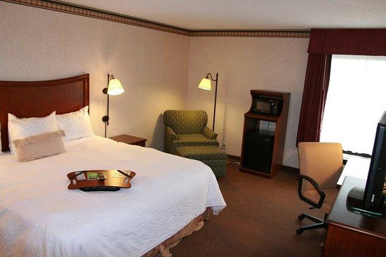 Hampton Inn & Suites Alexandria Old Town Area South: King Sbed Room2