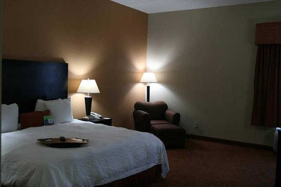 Hampton Inn Niagara Falls: King ADA