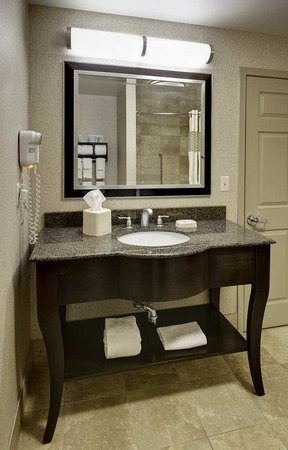 Hampton Inn & Suites Buffalo Downtown: Guest Bathroom