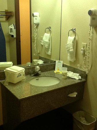 Days Inn Biltmore East: Hotel Sink Area