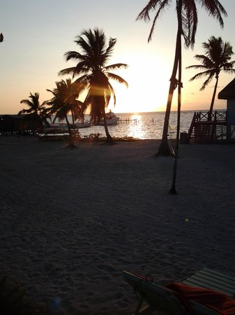 Blackbird Caye Resort: Sunrise, see what I mean. Wake up and take it in.