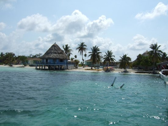 Blackbird Caye Resort: From the Dock