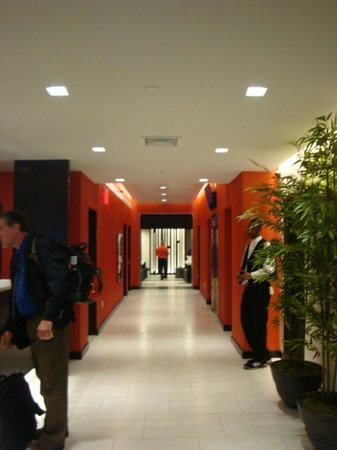 Broadway at Times Square Hotel: hallway from lobby to breakfast area