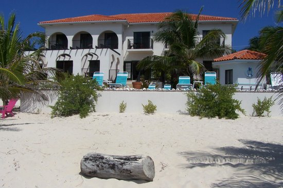 Turtle Nest Inn: Hotel from beach