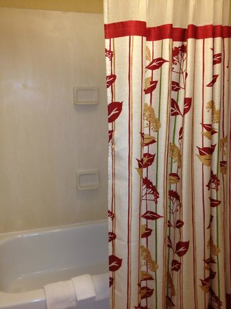 Courtyard by Marriott Harrisonburg: tub