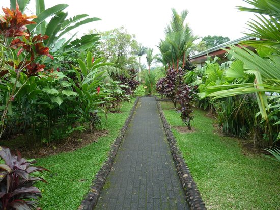 Volcano Lodge & Gardens: Exeptionnal place with lot of flores