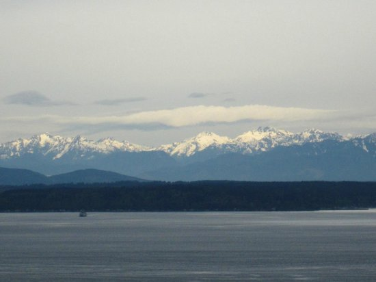The Westin Seattle: Close up of Olympic Mountains from room.