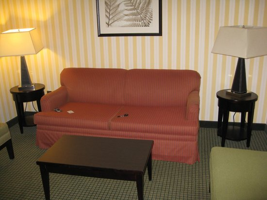 Holiday Inn & Suites: sitting room
