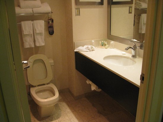 Holiday Inn &amp; Suites: bathroom