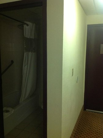 BEST WESTERN PLUS Gateway Grand: Room View to bathroom