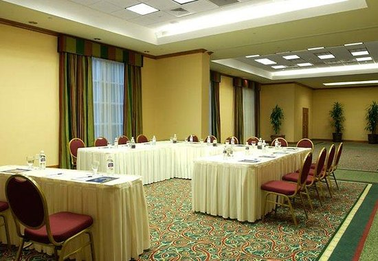 SpringHill Suites Atlanta Buckhead: Meeting Room