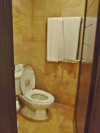 Catalonia Bavaro Beach, Casino & Golf Resort: seperate commode