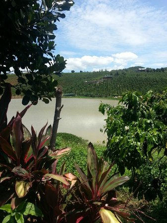 Dalat Palace Hotel: Man made lake to water crops