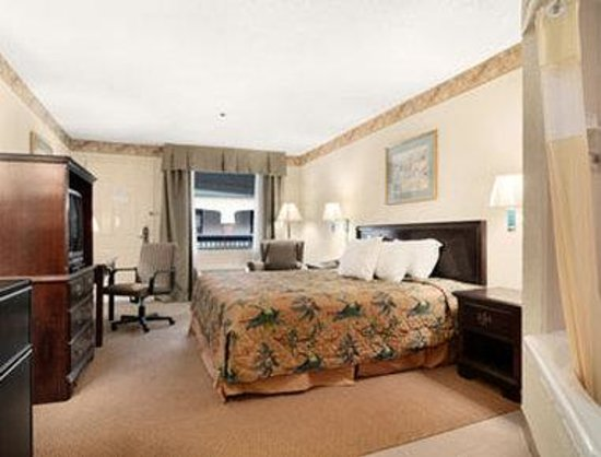 Days Inn and Suites Savannah Gateway: Standard One King Bed Room