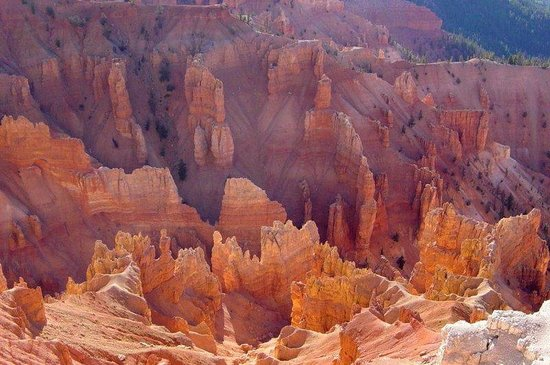 Abbey Inn: Cedar Breaks National Monument