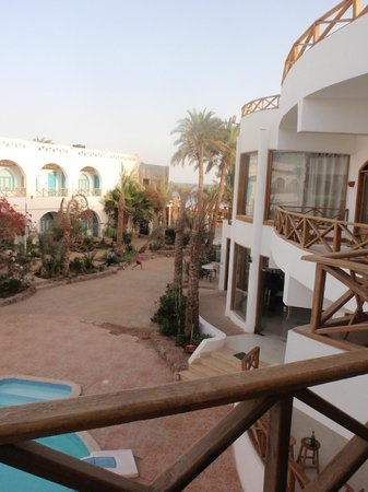 Red Sea Relax Resort: View from room - Out towards front of hotel