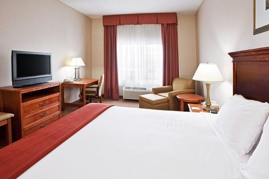 Holiday Inn Express Hotel & Suites Detroit-Utica: King Guest Room