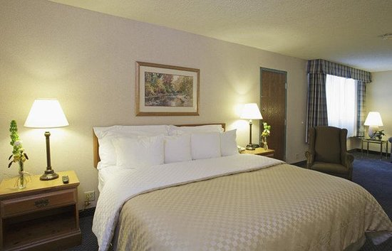 Holiday Inn Louisville East - Hurstbourne: Unwind Stay Awhile