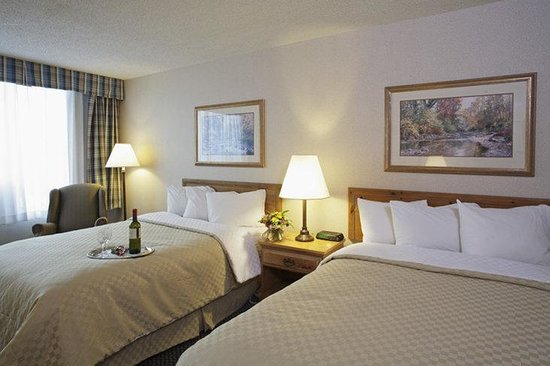 Holiday Inn Louisville East - Hurstbourne: A Different Kind of Holiday