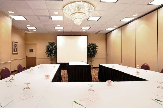 Holiday Inn Chicago Downtown: Washington Meeting Room