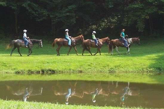 Wilkesboro, Carolina del Nord: Horseback Riding at Leatherwood Mountains.