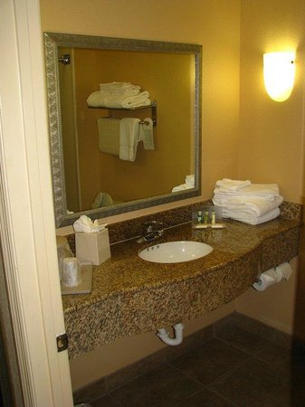 Holiday Inn Hotel &amp; Suites Daytona Beach: Guest Bathroom