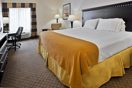 Holiday Inn Express Venice/Sarasota: King Bed Guest Room