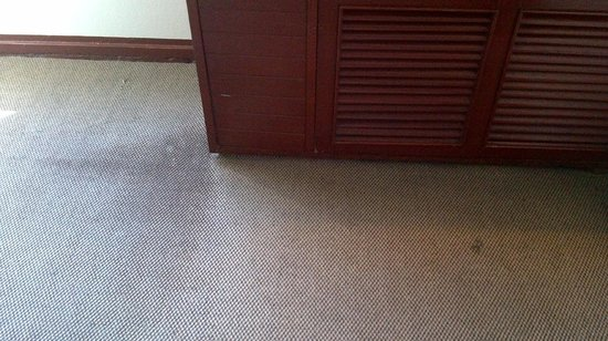 Viengtai Hotel: Stains on carpet