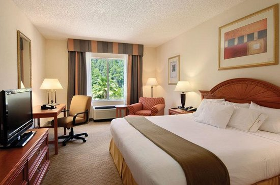 Holiday Inn Express Hotel & Suites New Tampa I-75 Bruce B. Downs: Guest Room