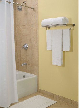 Holiday Inn Express Hotel & Suites New Tampa I-75 Bruce B. Downs: Guest Bathroom