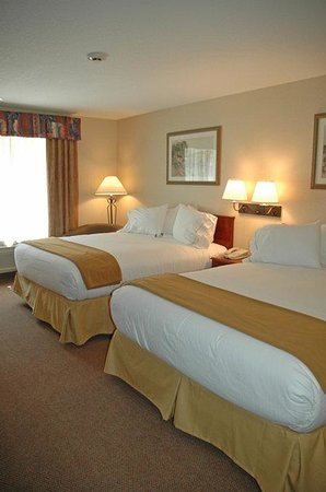 Holiday Inn Express Hotel & Suites Hill City: Queen Bed Guest Room