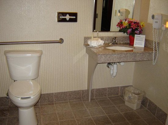 Holiday Inn Express Lordstown / Newton Falls / Warren : Wheelchair Accessible Bathroom