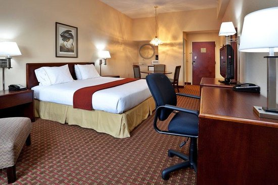 Holiday Inn Express Greenville: King Bed Guest Room