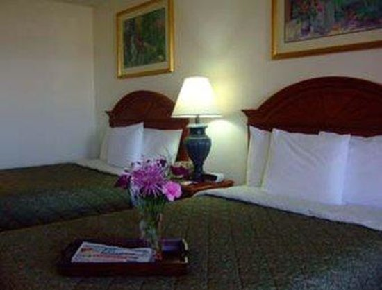 Knights Inn Cadiz: Guest Room With 2 Beds