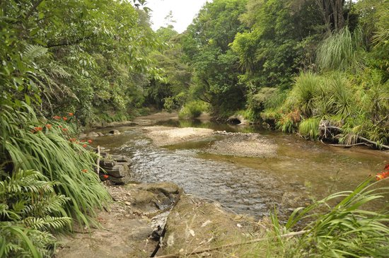 Whangamata, Yeni Zelanda: River on the property