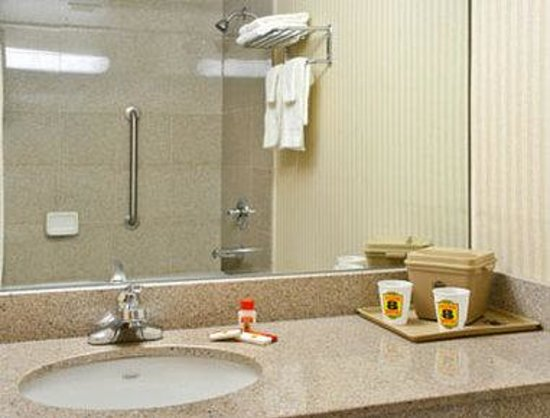 Super 8 JFK Airport/Jamaica: Bathroom