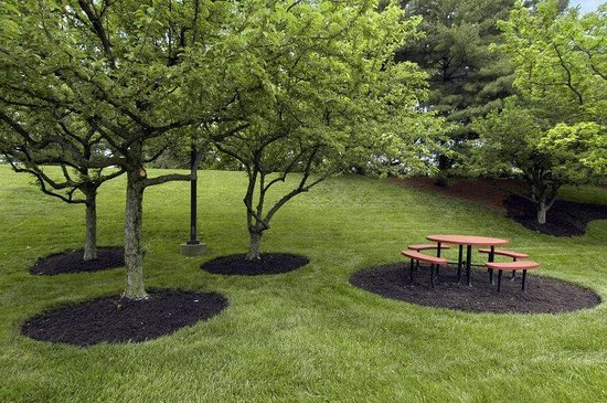 Red Roof Inn Cincinnati Northeast - Blue Ash: Picnic Area