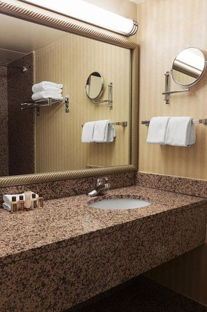Sheraton Reston Hotel: Guest Bathroom